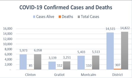 COVID cases & deaths